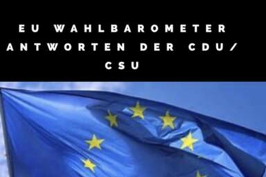 CDU CSU