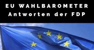 Foto FDP - Wahlprüfsteine