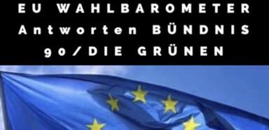 Bündnis 90 / DIE GRÜNEN - Bearbeitung Foto - Peter Wiessner